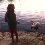 Mr. Swan